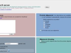 TranslatorX server:基于氨基酸序列的核酸比对工具