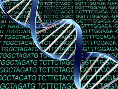 DNA第7种和第8种碱基