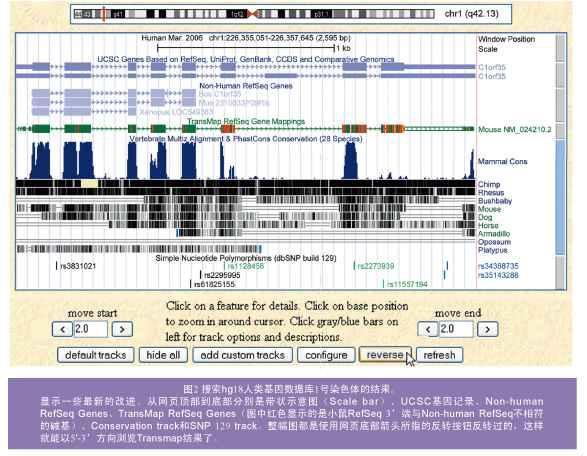 UCSC:基因组相关研究的一个有力工具