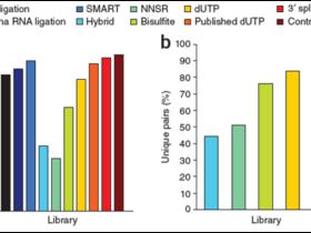 Strand Specific mRNA sequencing 之重要性与分析