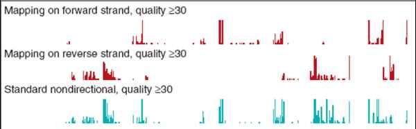 以RNA为测序模板的新技术:FRT-seq