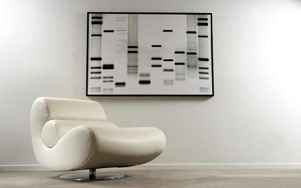 将DNA转化为艺术