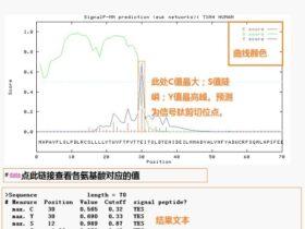 SignalP:信号肽预测工具
