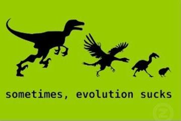 某某能力为什么没有演化出来