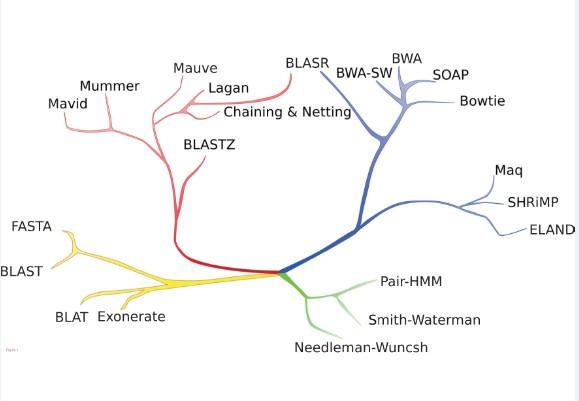 BLASR:PacBio数据比对工具