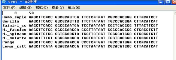 多重序列比对及系统发生树的构建