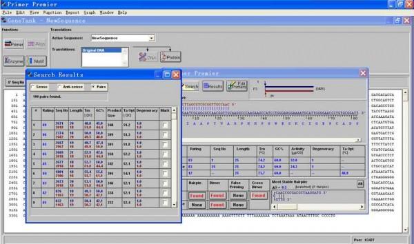 PCR引物设计及评价