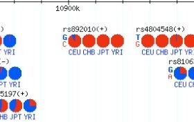 Gbrowse SNV突变频率图绘制