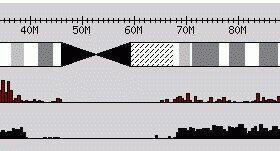 GBrowse之频率直方图