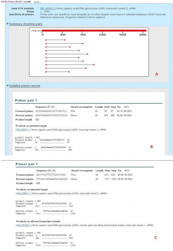 Primer-BLAST:NCBI的引物设计和特异性检验工具