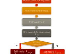 MACS(Model-based Analysis of ChIP-Seq)使用说明