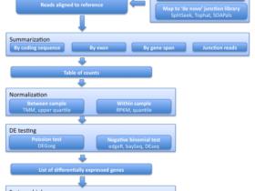 从RNA-seq结果到差异表达
