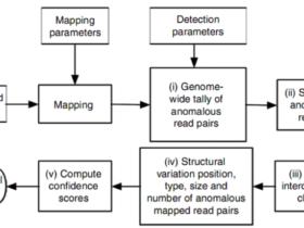 基因组变异检测概述