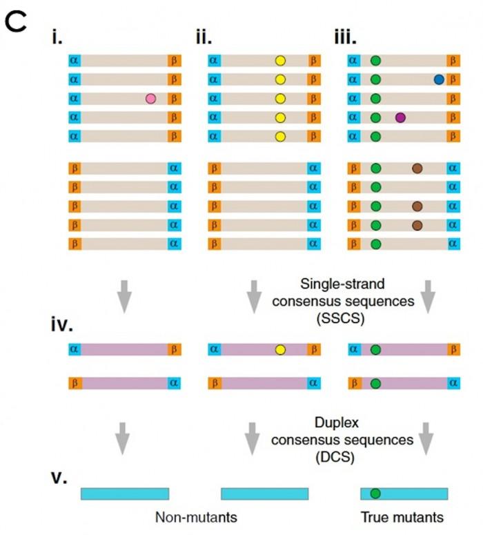 如何检测超低频突变?