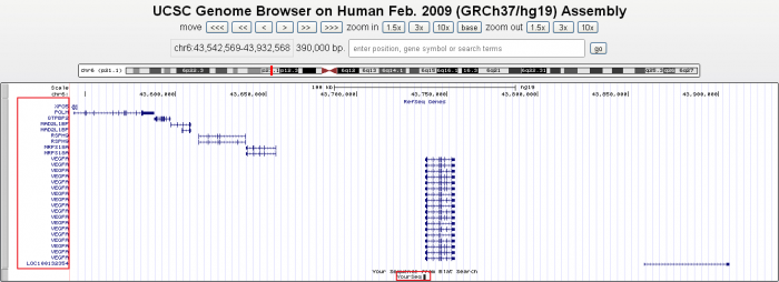 利用UCSC找序列的上下游基因