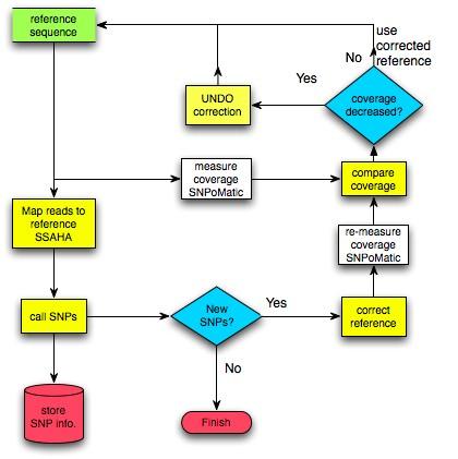 使用 ICORN 进行基因组核苷酸的修正