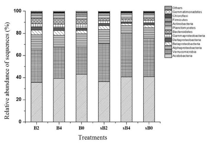 16S测序技术助力澳大利亚湿硬叶林土壤微生物多样性研究