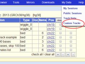 用UCSC提供的Genome Browser工具来可视化customTrack