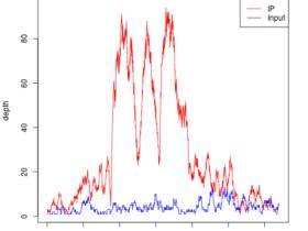 根据比对的bam文件来对peaks区域可视化