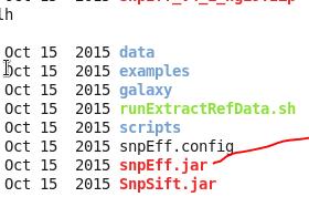 用snpEFF对vcf格式的突变数据进行注释