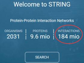 下载最新的蛋白相互作用数据库-STRING