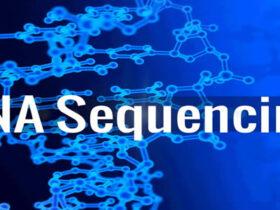 RNA-Seq数据分析新方法流程(HISAT、StringTie和Ballgown)