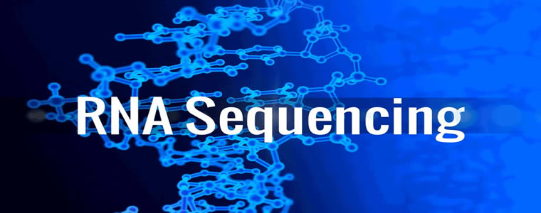 10371-RNA-Seq数据分析新方法流程(HISAT、StringTie和Ballgown)