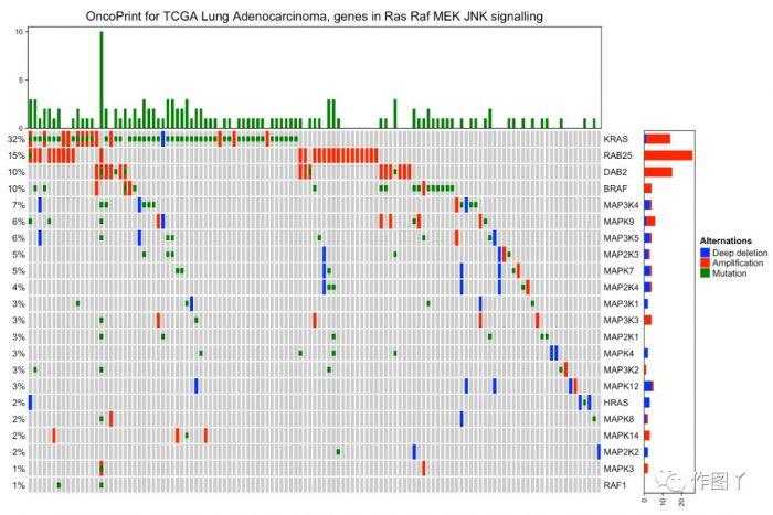 ComplexHeatmap绘制全基因组突变景观图