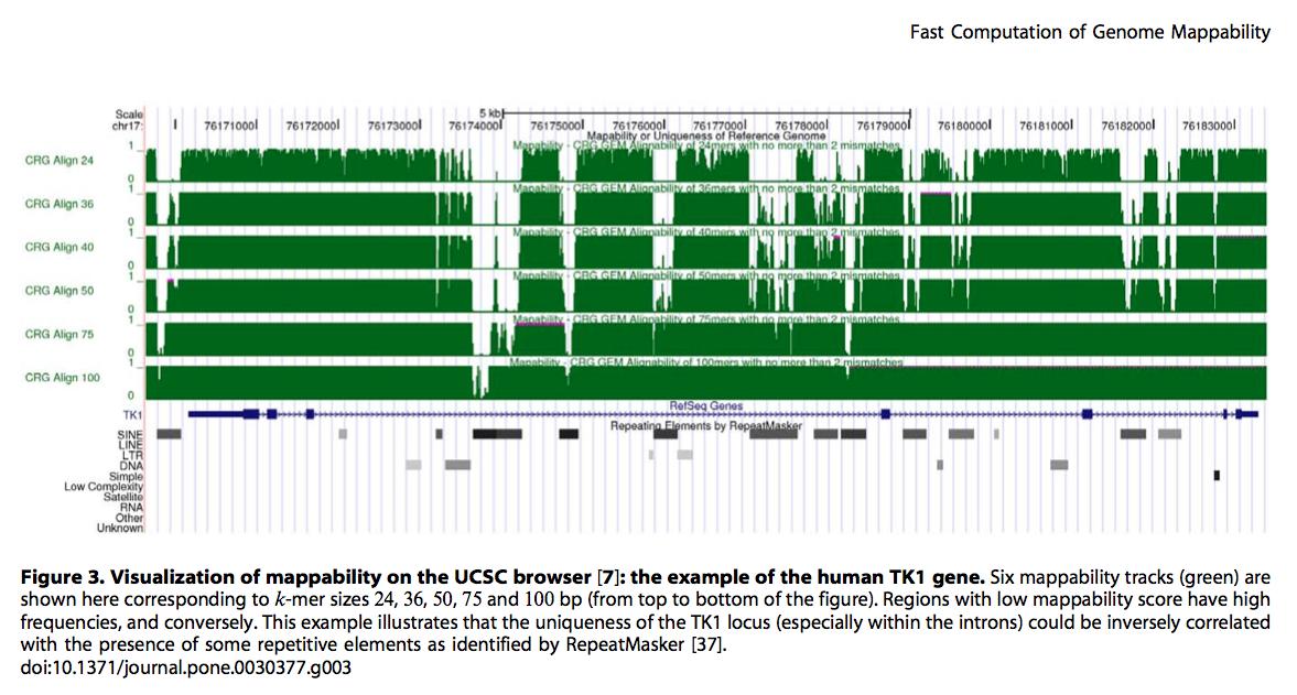 利用GEM-library创建基因组Mappability文件