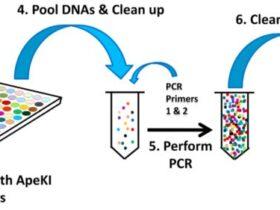 简化基因组数据分析实战