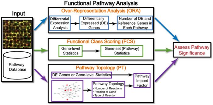 本体论和功能分析