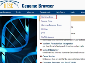 转录组入门(4):了解参考基因组及基因注释