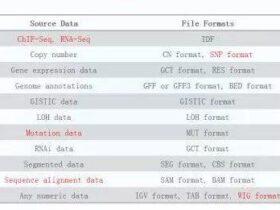 IGV基因组浏览器可视化高通量测序数据