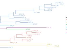 ggtree美化进化树