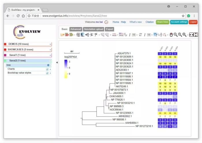 EvolView画进化树+热图:组合图的绘制