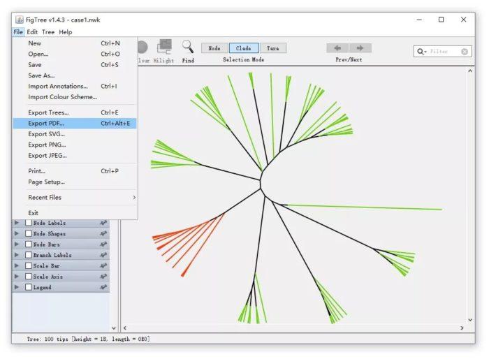 """如何绘制""""松针""""状的进化树"""