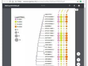 """""""进化树+点状图""""组合图的绘制"""