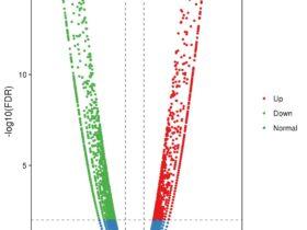 差异表达基因时的Log2FC和FDR值的含义?
