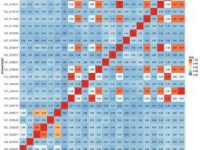 Average Nucleotide Identity (ANI) 计算