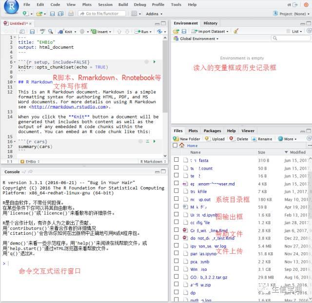 R语言学习 – 入门环境Rstudio安装