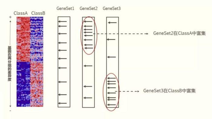 GSEA法基因功能富集分析原理详解