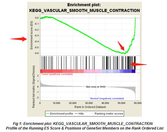 GSEA-基因富集分析