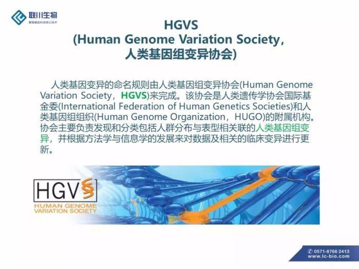 HGVS变异命名规则简介(PPT版本)