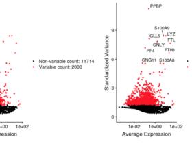 几个scRNA找高变异基因(HVGs)的方法