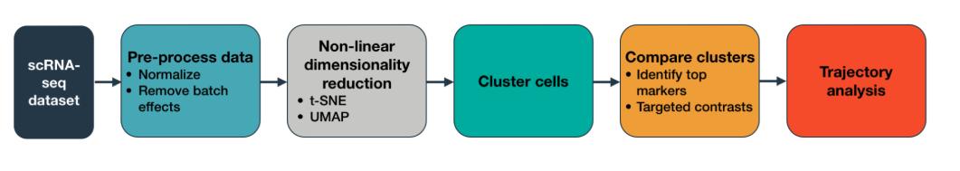 跟着官网学习单细胞Monocle3