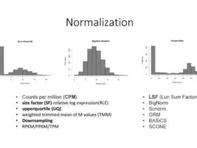 单细胞测序数据处理知识