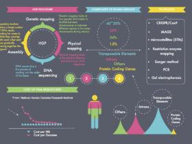 GATK4.0和全基因组数据分析实践(下)