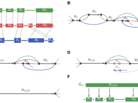 利用参考基因组进行scaffolding提高组装连续性的工具整理