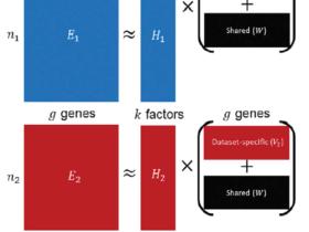 Liger单细胞多组学分析:原理
