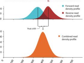 ATAC-Seq分析教程:对ATAC-Seq/ChIP-seq的质量评估(一)phantompeakqualtools